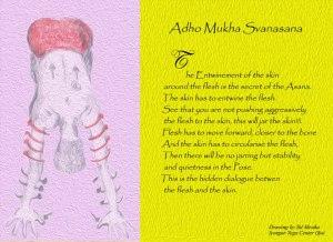 Ado Mukha S